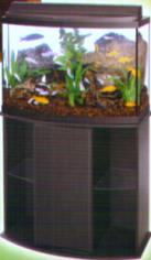 ALL GLASS AQUARIUM GENEVA SERIES BOW FRONT COMBO