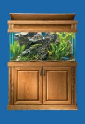 MODERN SERIES OAK STAND AND CAP PICTURED WITH 90 GALLON ALL GLASS AQUARIUM