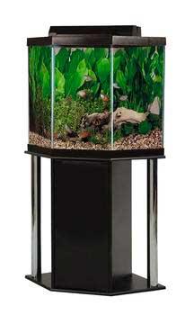 Aquariums extraordinaire inc aquariums and aquarium supplies for Fish tank with stand combo